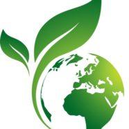 Ecotheology Retreat #2 – God as Wholeness