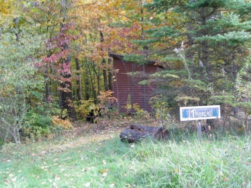 Thoreau cabin in woods